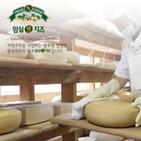 치즈,생산,임실,대한민국,임실군