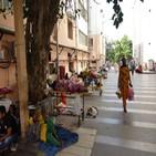 코로나19,뉴델리,병원,상황,주민,환자,교민,병상,봉쇄,확산