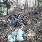 미얀마,난민,25만,지역,미얀마군,특별보고관