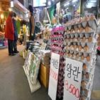 계란,가격,정부,수입,상승세,파동,겨울