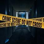 스토킹,범죄,처벌,가해자