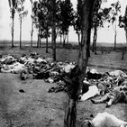 제노사이드,학살,범죄,사건,바이든,대한,르완다,탄압,유엔,집단학살