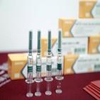 백신,이집트,중국,생산