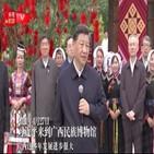민족,탈빈곤,시진핑,광시,주석