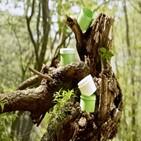 플라스틱,용기,친환경,화장품,기존,개발,사용,생분해,내열
