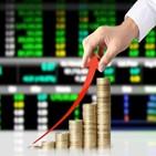 금융지주,순이익,실적,올해,비은행