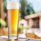 맥주,시장,무알코올,제로,하이네켄,탄산음료,알코올,지난해