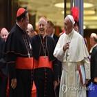 교황,추기경,재판,교서,특권