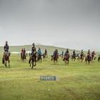 경마,달리,경주,경주마,제주마,세계,이색,일반적,마차경주,몽골
