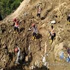 오랑우탄,수력발전소,산사태,토루,바탕,건설,실종