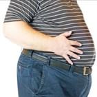 비만,연구진,체중,미생물,제거,지방