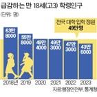 대학,수도권,서울,정원,학생,지방대,신입생,교육부