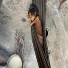 야노마미,부족,브라질,불법,원주민,아마존,어린이,지원