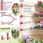 온실,서울식물원,식물,나무,주제원,열매,바오바브나무,수국,높이,대왕야자