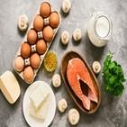 단백질,섭취,식품,아미노산,권장량,가장