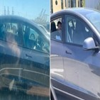 테슬라,운전석,뒷좌석,고속도로,차량
