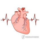 리듬조절치료,심방세동,맥박수조절치료,환자,진단