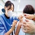 접종,백신,교차,결과,집단,연구,이번