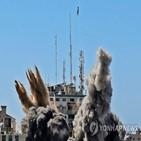 이스라엘,가자지구,공격,회의,대한,이스라엘군