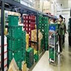 물류센터,오아시스,새벽배송,컬리,시스템,상자,소프트웨어,직원