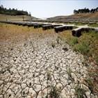 가뭄,캘리포니아,지역,영향,생산,채소,강수량,연어,커피