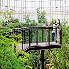 식물,열대온실,뉴턴,멸종,지중해온실,국립세종수목원,블루,코로나,사과나무,사계절