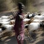 가축,무기,강도,지역,구매,케냐,주민,위해,아루페