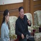 비핵화,한반도,표현,북한