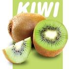 키위,과일,골드키위,비타민,그린키위,영양소,밀도