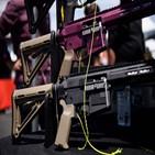 총기,구매,신원조회,사람,작년