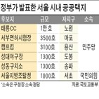 정부,소속,여당,서울,민주당,공급,주택,반발,지방선거,주민