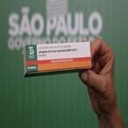백신,회분,생산,700만,승인,브라질