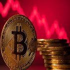 비트코인,이날,머스크,달러,상승,가격