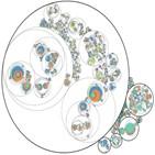 암세포,전이,유전자,클론,세포,연구팀,과정