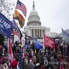 테러,미국,국내,의회,극단주의,위협,폭동,전략