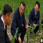 가격,중국,농자재,농민,농사