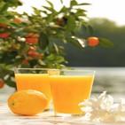 플로리다,오렌지주스,오렌지,도움