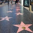 영화,이름,할리우드,거리,명예