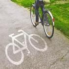 자전거,사업,부품,업체,시마노,실적
