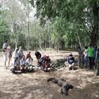 코모도왕도마뱀,관광객,코모도,국립공원,코모도섬,라부안,바조,개체,사진,인도네시아