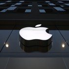 애플,LG전자,아이폰,LG베스트샵,판매,삼성전자,제품,점유율,스마트폰,갤럭시