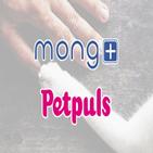 몽플러스,반려동물,펫펄스,반려견,기대,제품,개발,반려견과,상태
