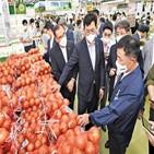 가격,상승,생산자물가,지난달