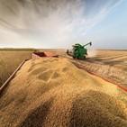 농산물,브라질,생산량,올해