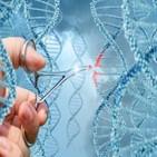 유전자가위,진단키트,기술,개발,시장,코로나19,미국