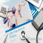 전망,보험연구원,보험산업,올해,성장률,수입보험료,내년