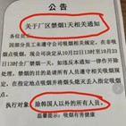 한국인,중국,매체